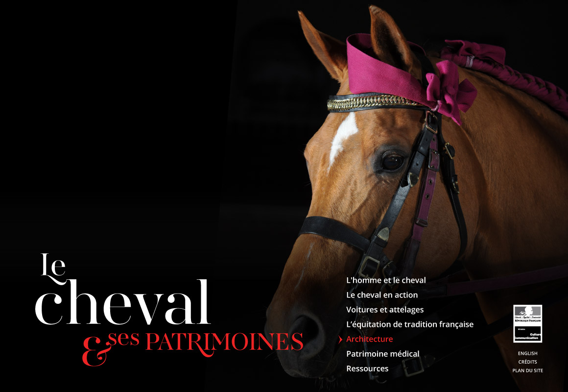 cheval_1
