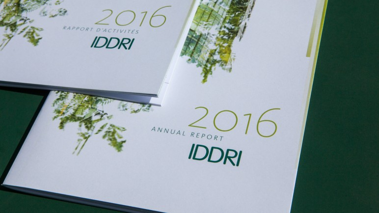 Rapport_annuel_IDDRI_2016_Pepper_Only_08